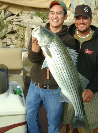 Diamond valley lake fishing in california for Lake skinner fishing report
