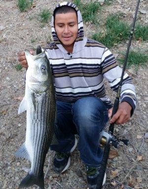 Pyramid Lake Fishing In California
