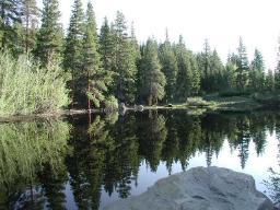 Rock creek lakes fishing in california for Rock creek fishing report